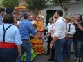 desfile-carretas-dieciseis (28)