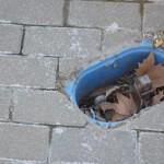 Bailén Denuncia – Toma de agua en Paseo de las Palmeras