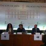 Plan de accesibilidad para calles y edificios de Bailén