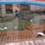 El PP solicita a la Delegación de Salud una inspección de salubridad en las fuentes de Bailén y sus aguas
