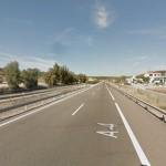 Nuevo atropello de lince ibérico en Bailén