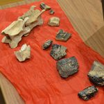 La Carta Arqueológica desvela importantes hallazgos sobre la Batalla de Bailén