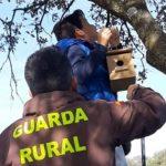 Grandes y pequeños colocan cajas de nidos para aves en Burguillos