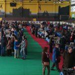 8.000 visitas avalan el éxito de la Feria de Coleccionismo y Antigüedades
